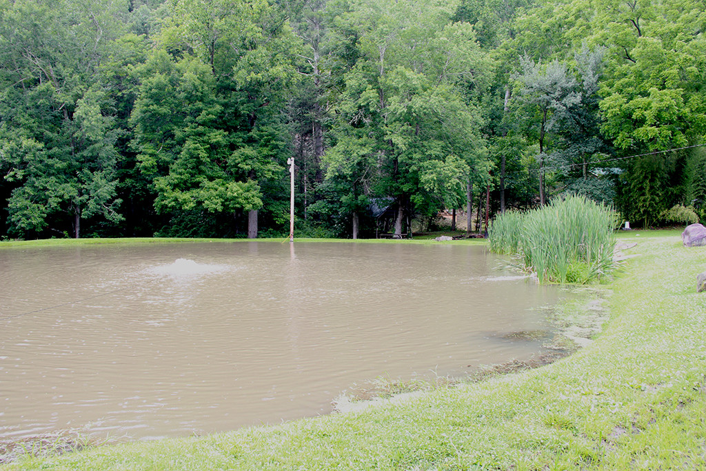 Ferguson General StoreTrout Pond